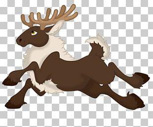Reindeer Horse Antler Brown PNG