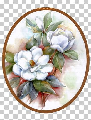 Flower Painting Southern Magnolia Floral Design PNG