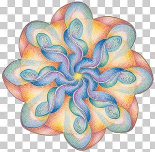 Mandala Sacred Geometry Rosette Dynamiek PNG