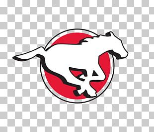 Calgary Stampeders Canadian Football League BC Lions Calgary Flames National Hockey League PNG