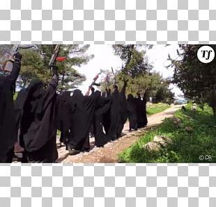 Raqqa Jihad Social Media Islamic State Of Iraq And The Levant Woman PNG