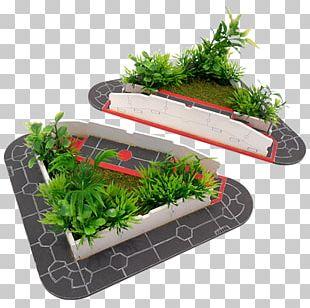 Flowerpot Herb PNG