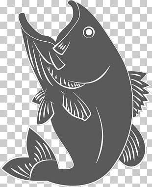 Marine Mammal White Fish Font PNG
