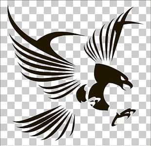 Bird Flight Eagle PNG