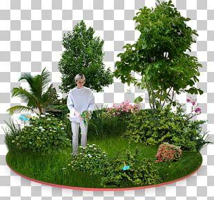 Garden Furniture Tree Flower Garden PNG