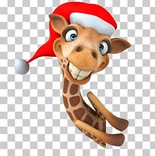 Giraffe Stock Photography Cartoon Stock Illustration PNG
