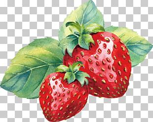 Strawberry Aedmaasikas Amorodo Watercolor Painting PNG