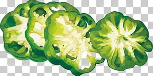 Bell Pepper Vegetable PNG