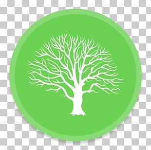 Genealogy Family Tree MacFamilyTree History PNG