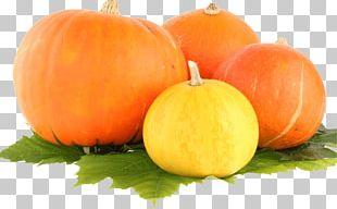 Group Pumpkin PNG