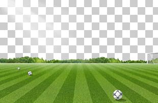 Football Pitch Lawn PNG