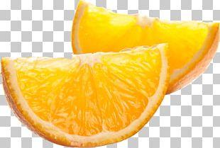 Citrus × Sinensis PNG