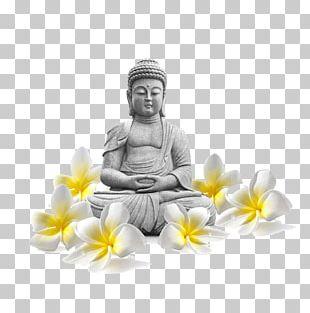 Buddharupa Proxy List Buddhism Icon PNG
