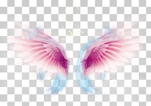Wing Computer File PNG