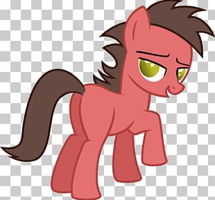 Pony Applejack Pinkie Pie Fluttershy Rainbow Dash PNG