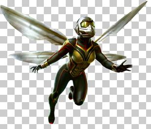 Wasp Ant-Man Hank Pym Ghost Hope Pym PNG