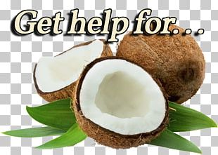Coconut Water Coconut Milk Coconut Candy Coconut Oil PNG