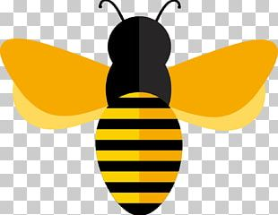 Honey Bee Adobe Illustrator Euclidean PNG
