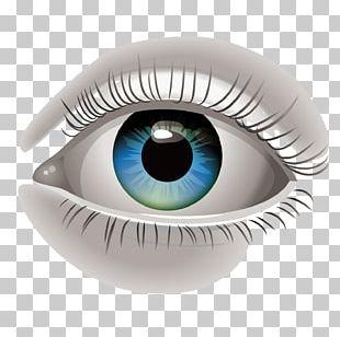 Human Eye Euclidean PNG