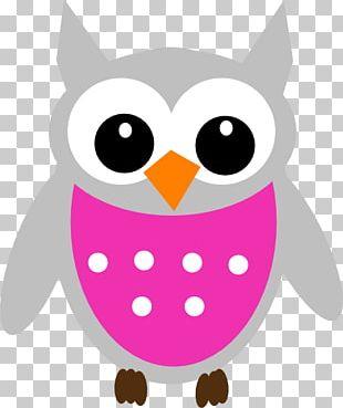 Owl Cartoon Graphics PNG