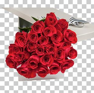 Flower Bouquet Poinsettia Christmas Cut Flowers PNG