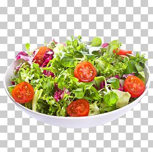 Greek Salad Caesar Salad Wrap Bean Salad Pasta Salad PNG