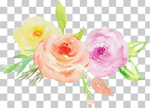 Garden Roses Wedding Invitation Watercolor Painting Floral Design Flower PNG