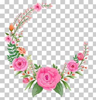 Flower Pink Rose PNG