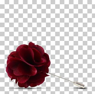 Garden Roses Red Cut Flowers Maroon PNG