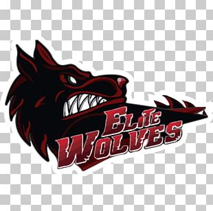 Elite Wolves Dota 2 Copa Latino-americana De League Of Legends Electronic Sports PNG