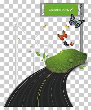 Butterfly Green Road Illustration PNG
