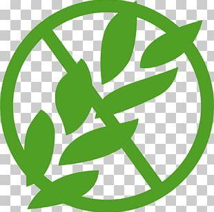 Gluten-free Diet Logo Pasta PNG