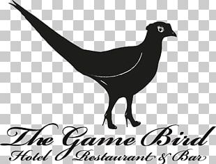 The Trinacria Bed And Breakfast On The Sea Bird History Summer Camp | July PNG