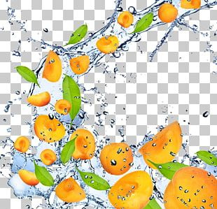Fruit Apricot High-definition Television 1080p PNG