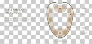 Product Design Material Body Jewellery PNG