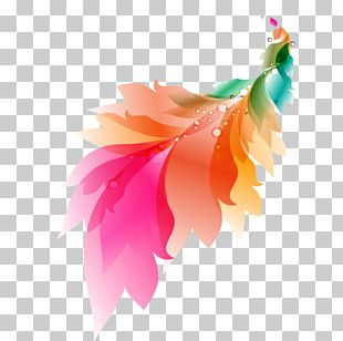 Watercolor Painting Feather PNG