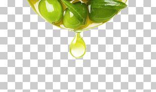 Extra Virgin Olive Oil Fruit PNG