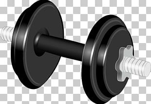 Dumbbell Physical Exercise Weight Training PNG