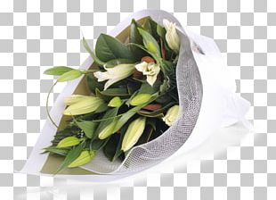 Carnarvon Flower Bouquet Cut Flowers Floral Design PNG