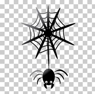 Spider Web Computer Icons Halloween Film Series PNG