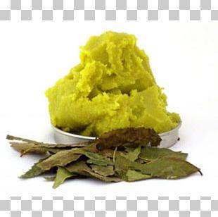 Neem Tree Neem Oil Vegetable Oil Artikel PNG
