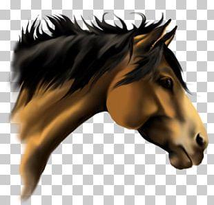 American Paint Horse American Quarter Horse Stallion 3D Horse Racing Mane PNG