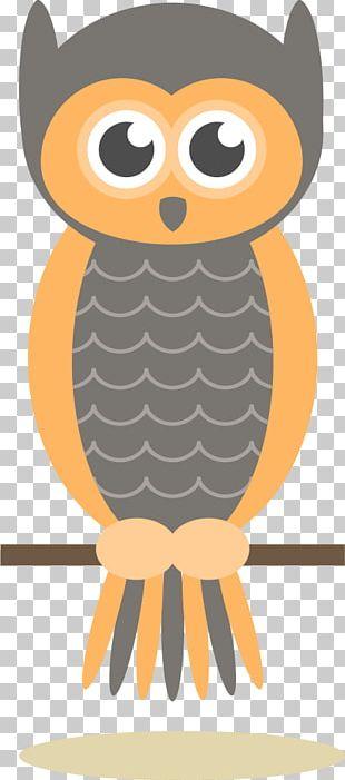 Owl Drawing Cartoon Illustration PNG