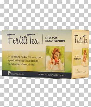 Tea Bag Fertility Herbal Tea Health PNG