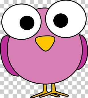 Bird Cartoon Eye PNG