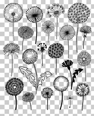 Dandelion 20 Ways To Draw A Tree And 44 Other Nifty Things From Nature: A Sketchbook For Artists PNG