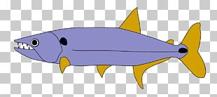 Acestrorhynchus Lacustris Orinoco Fish Hoplias Malabaricus PNG