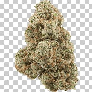 Cannabis Kush Medical Marijuana Card Biscuits Tetrahydrocannabinol PNG