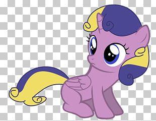 My Little Pony Twilight Sparkle Princess Cadance Rainbow Dash PNG