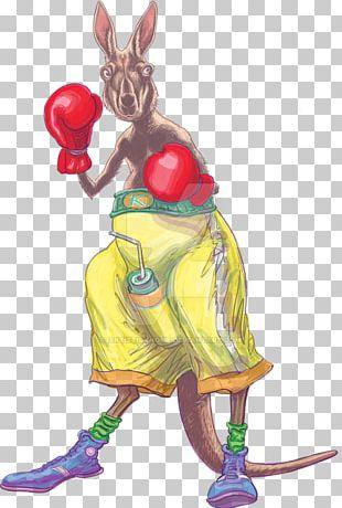 Australia Macropodidae Boxing Kangaroo PNG